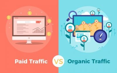 Which Comes First: Paid Traffic Or Organic Traffic?